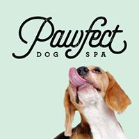 Pawfect Dog Spa Headcorn